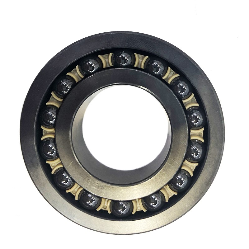 Ceramic Ball Bearing Si3n4 608 6000 6800 Plastic Bearing with High Precision ABEC-5