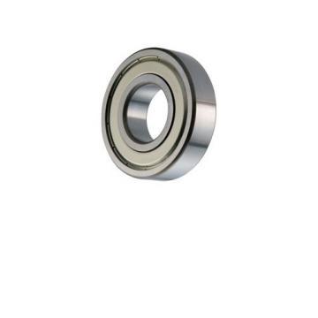 Deep groove ball bearing 6006 6006zz 6006DDU NSK bearing 6006du