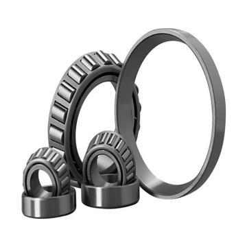 Chinese Factory Roller Bearings Spherical Roller Bearing 22356
